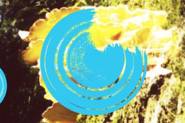prozessor_1.jpg