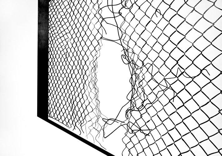 federica_g_rtner_zeichnung.jpg
